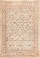 Ivory Background Antique Indian Amritsar Rug 47438 Color Detail - By Nazmiyal